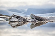 Fjallsarlon Glacier Lagoon, Iceland - 68569769