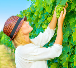 Woman pluck grape