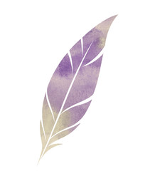Watercolor feather