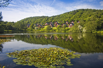 Barend Holiday Village, Loch and Lodges. Lillies Foreground