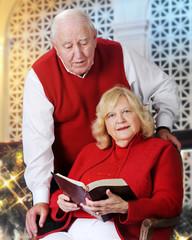 Christmastime Bible Read