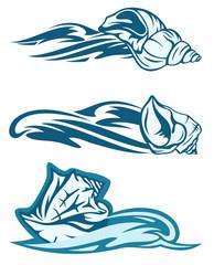 sea shell design elements