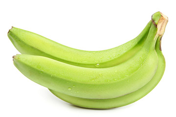 Branch green bananas in water drops.