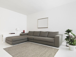 interior view of living room with fabric sofa and carpet