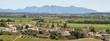 Leinwanddruck Bild - Vineyards with Montserrat peaks at background