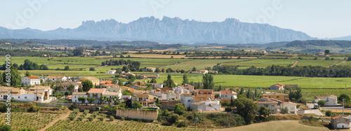 Leinwanddruck Bild Vineyards with Montserrat peaks at background