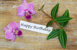 Happy birthday card with pink orchids and green leaves on wood