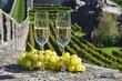 Pair of champagne glasses. Bellinzona, Switzerland
