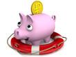 Страхование вкладов. Концепция