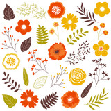 Fototapety Fall flowers