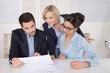 Teamwork: Gruppe Personen im Büro; männlich, weiblich