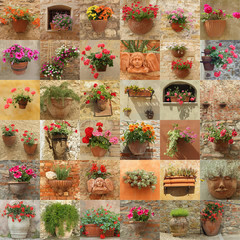 wall made of many images with flowers in pots