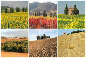 wonderful tuscan landscape collage