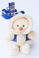 White Teddy Bear in a Winter Coat with a Big Blue Ribbon