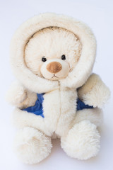 White Teddy Bear in a Fluffy Winter Coat