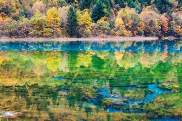 autumn fairy tale landscapes in jiuzhaigou