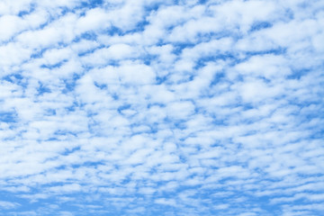 Altocumulus cloud and blue sky