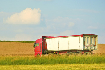 Truck on road against wheat field in summer with blue sky.