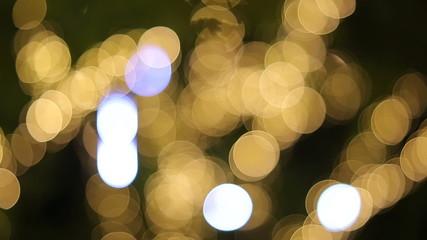 Christmas Illumination On Branches Of Tree