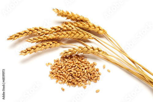 Leinwandbild Motiv Wheat ears and seed