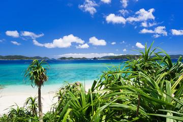 沖縄の海・阿嘉島