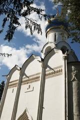 st. demetrius church in Vladimir