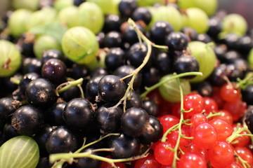 making juice of fresh berries