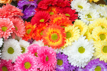 Colourful of Plastic flowers