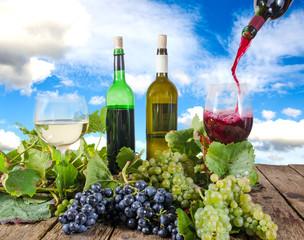 Pfälzer Weinprobe :)