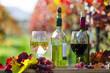Pfälzer Weinprobe im Weinberg :)