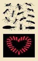 Ant insect silhouettes