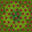 seamless pattern clover with ladybug