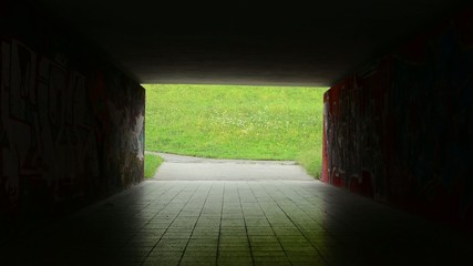 pedestrian underpass - dark - meadow with flowers