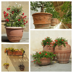 group of images with beautiful plant containers, Tuscany