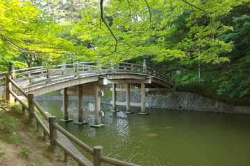 新緑の中の木造橋