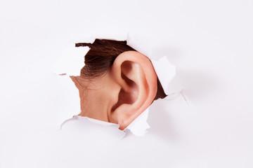 eavesdrop -Bug ear