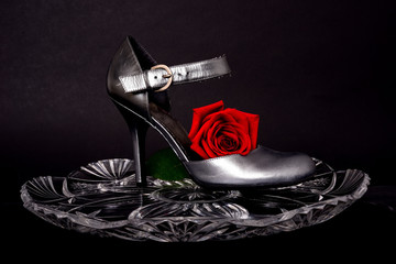 Lady's Shoe and rose