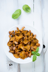 Marinated chanterelles with green basil leaves, above view