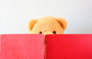 photo of teddy bear reading book