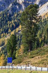 Italy land border