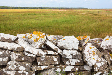 Stone wall with lichens