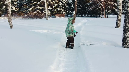 Little boy is  walking in the park. Winter.