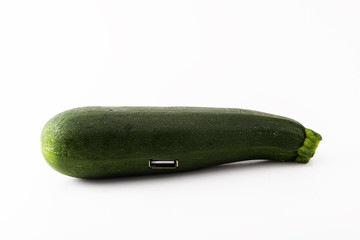 courgette and evolution