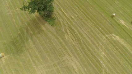 Aerial view of harvested barley field