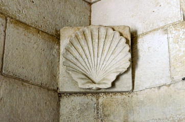 Shell bas-relief in Mausoleum of Theodoric, Ravenna