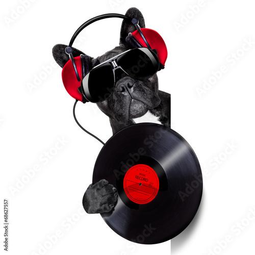 canvas print picture dog record vinyl