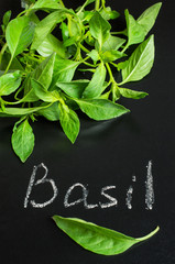 fresh basil on a blackboard