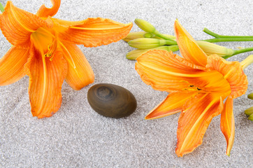 Pebble stone between two orange lily flowers on gray sand