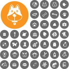 Pet and Vet icons set. Illustration eps10