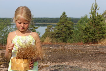 young finnish girl with basket of hay
